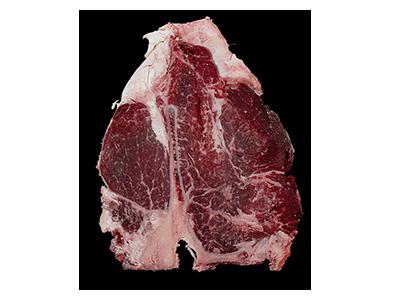 Scottona polonia carne home 1