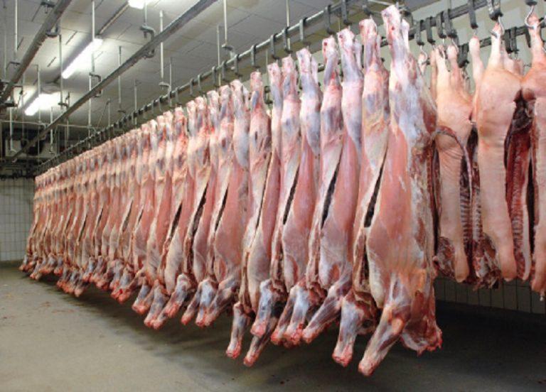 Tagli carne 05